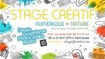 Stage de printemps : créatif (numérique + nature) de 6 à 12